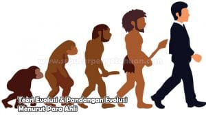 Teori Evolusi & Pandangan Evolusi Menurut Para Ahli