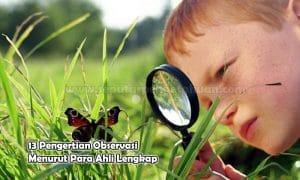13 Pengertian Observasi Menurut Para Ahli Lengkap