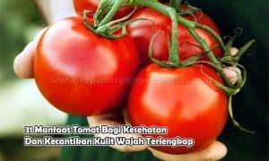 31 Manfaat Tomat Bagi Kesehatan Dan Kecantikan Kulit Wajah Terlengkap