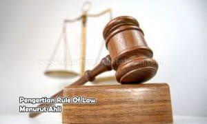 Pengertian Rule Of Law Menurut Ahli