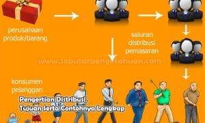 Pengertian Distribusi, Tujuan Serta Contohnya Lengkap