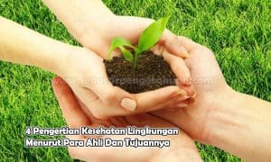 4 Pengertian Kesehatan Lingkungan Menurut Para Ahli Dan Tujuannya