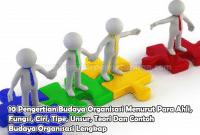 10 Pengertian Budaya Organisasi Menurut Para Ahli, Fungsi, Ciri, Tipe, Unsur, Teori Dan Contoh Budaya Organisasi