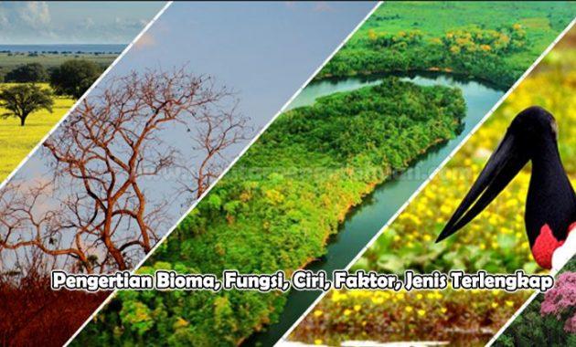 Pengertian Bioma, Fungsi, Ciri, Faktor, Jenis