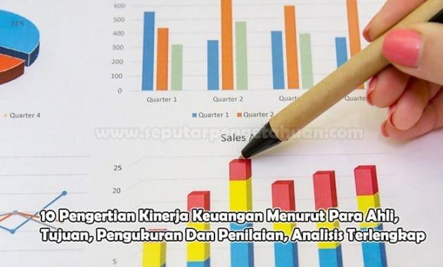Pengertian Kinerja Keuangan Menurut Para Ahli, Tujuan, Pengukuran Dan Penilaian, Analisis
