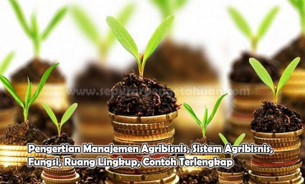 Pengertian Manajemen Agribisnis, Sistem Agribisnis, Fungsi, Ruang Lingkup, Contoh