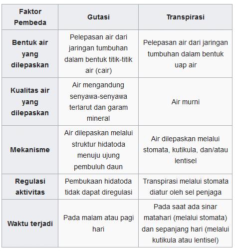 perbedaan gutasi dan transpirasi pada tumbuhan