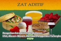Pengertian Zat Aditif Pada Makanan, Sifat, Macam-Macam, Dampak Penggunaan