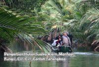 Pengertian Hutan Suaka Alam, Manfaat, Fungsi, Ciri-Ciri, Contoh