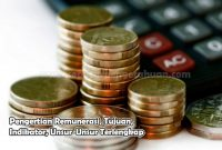 Pengertian Remunerasi, Tujuan, Indikator, Unsur-Unsur
