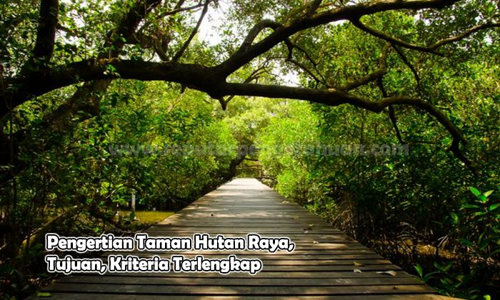 Pengertian Taman Hutan Raya, Tujuan, Kriteria