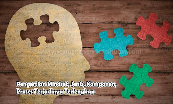 Pengertian Mindset, Jenis, Komponen, Proses Terjadinya