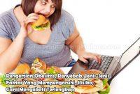 Pengertian Obesitas, Penyebab, Jenis-Jenis, Faktor Yang Mempengaruhi, Risiko, Cara Mengobati