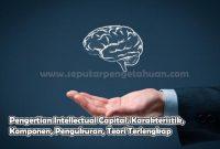 Pengertian Intellectual Capital, Karakteristik, Komponen, Pengukuran, Teori