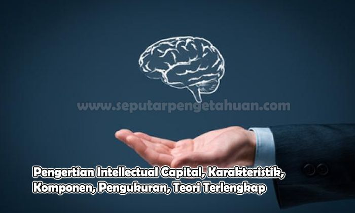 Pengertian Intellectual Capital, Karakteristik, Komponen, Pengukuran, Teori