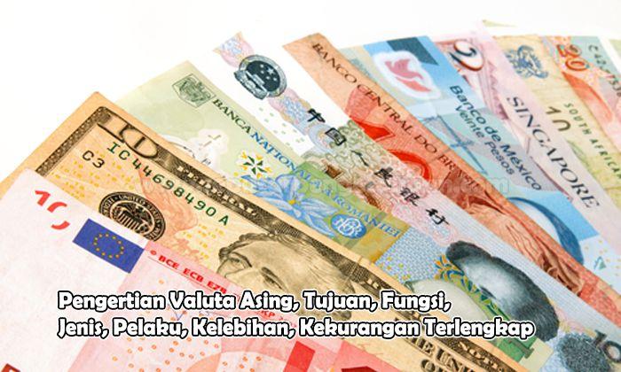 Pengertian Valuta Asing, Tujuan, Fungsi, Jenis, Pelaku, Kelebihan, Kekurangan