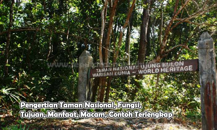 Pengertian Taman Nasional, Fungsi, Tujuan, Manfaat, Macam, Contoh
