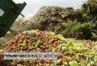 Pengertian Limbah Organik, Jenis, Prinsip Pengolahan