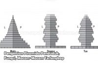Pengertian Piramida Penduduk, Fungsi, Macam-Macam